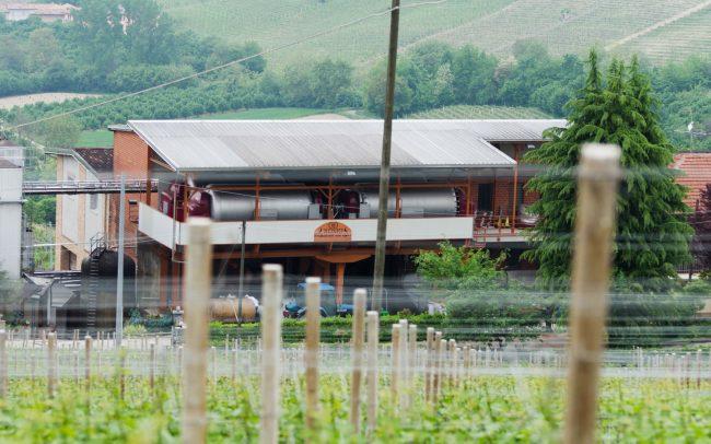 Luca Bosio Winery